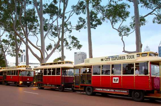 Perth Tram Company photo