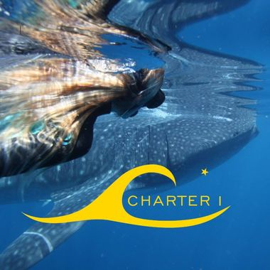 Charter 1 Logo - Logo Uploaded